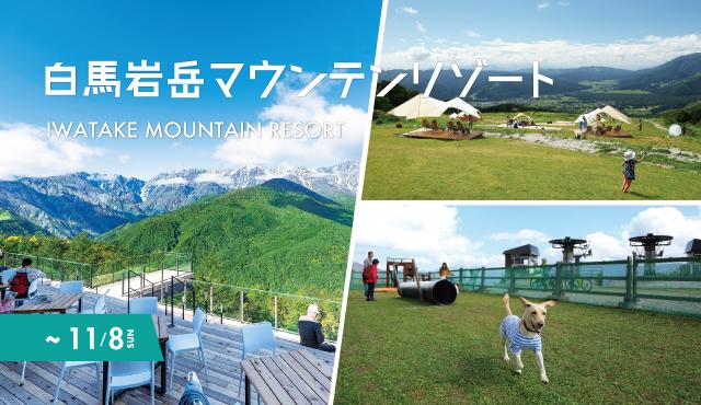 白馬 岩岳 ライブ カメラ